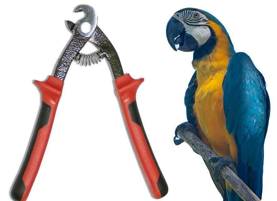 Een gat groter maken doe je snel en handig met de papegaaienbektang.